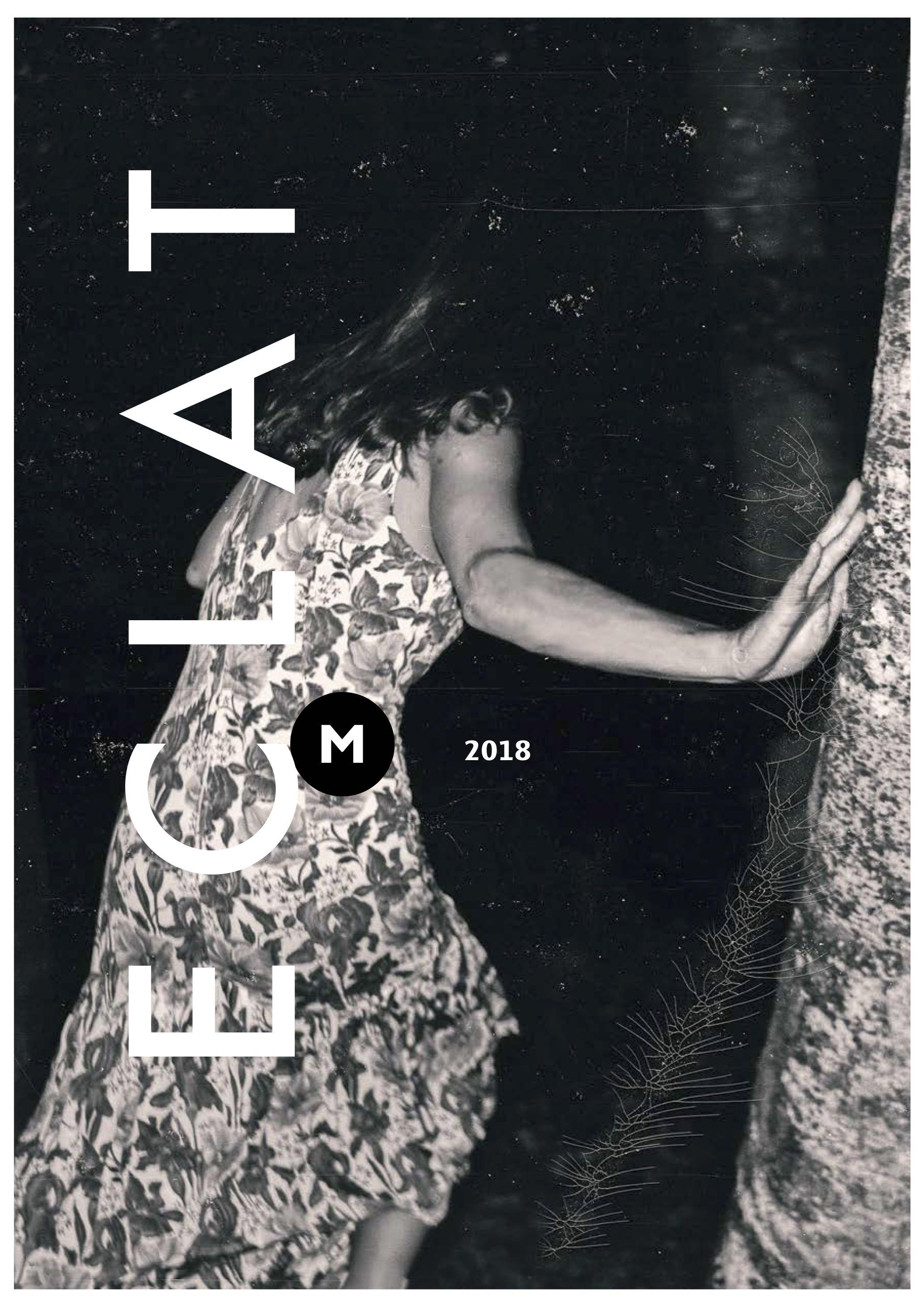 Eclat-Festival, Programmheftfoto